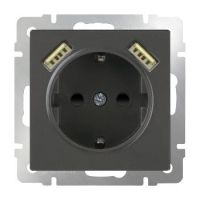 mechanism_grey-brown-socket-with-usb