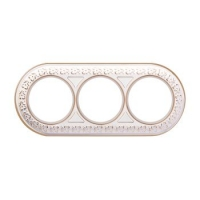wl70-frame-03-white-gold4